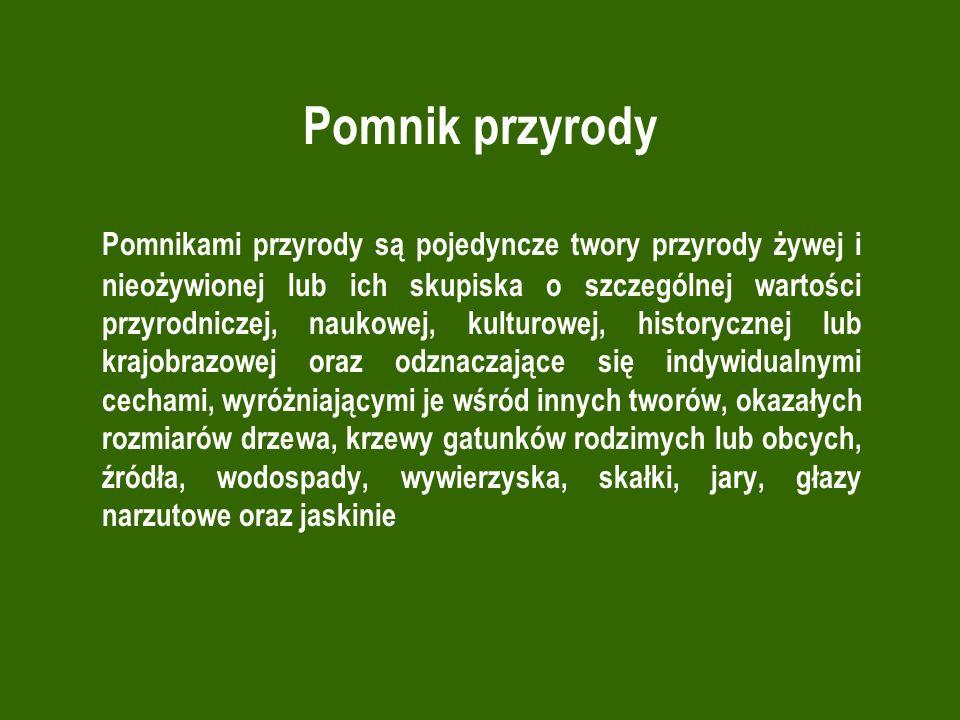 Rezerwaty przyrody Gmina Lwówek Rezerwat przyrody pod nazwą Rezerwat na Jeziorze Zgierzynieckim im.