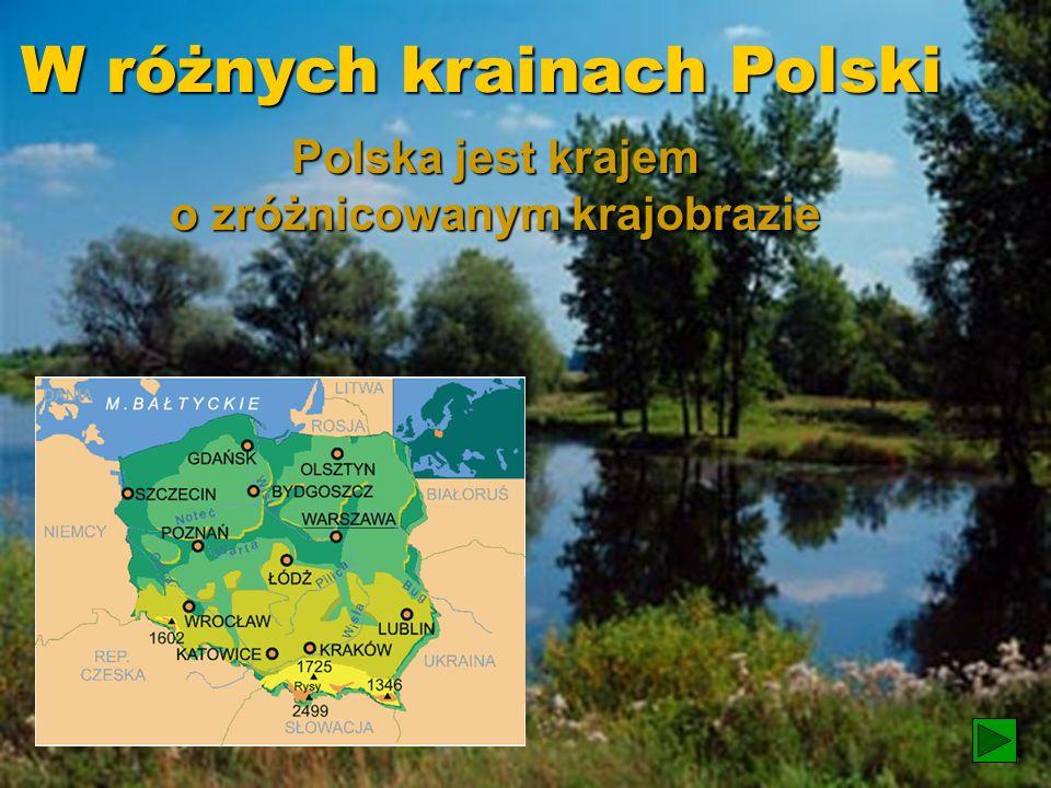 Krajobrazy Polski Krajobrazy Polski
