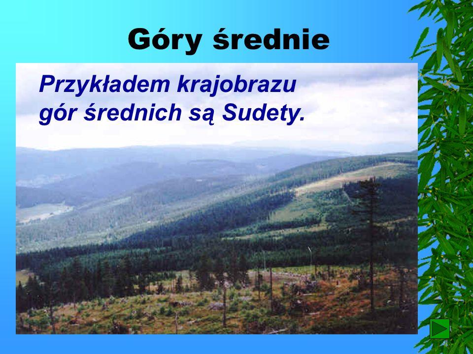 Na terenie Tatr znajduje się Tatrzański Park Narodowy. Tatrzański Park Narodowy Ostróżka tatrzańska Powrót