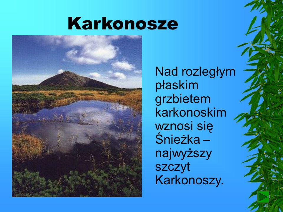 Karkonosze Najwyższą grupą górską w Sudetach są Karkonosze.