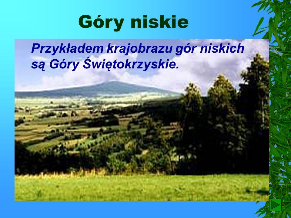 Karkonoski Park Narodowy Aby chronić roślinność i zwierzęta występujące na tym obszarze utworzono Karkonoski Park Narodowy. W granicach tego parku zna