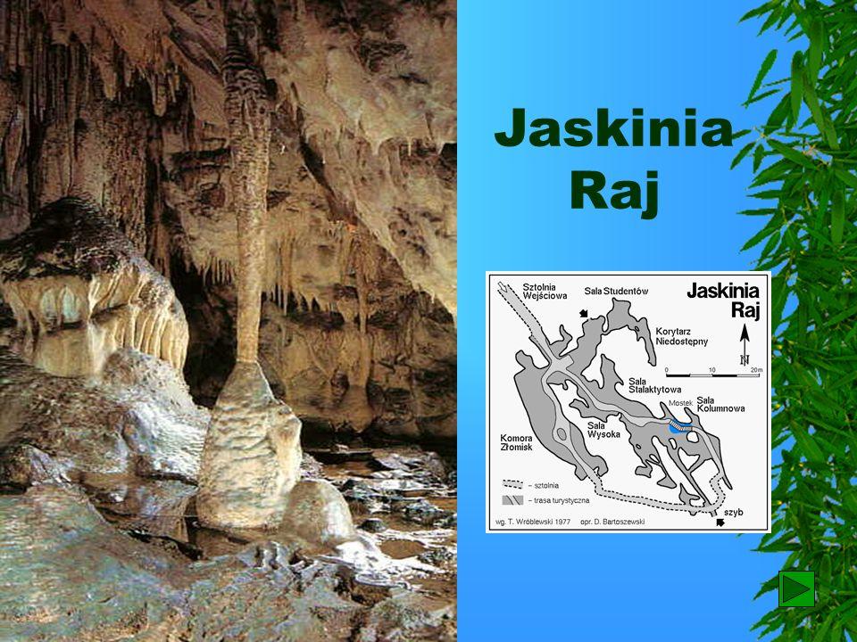 Jaskinia Raj Perłą rzeźby krasowej w górach Świętokrzyskich jest jaskinia Raj, powstała w wapieniach. W jej korytarzach obok bogatych form naciekowych