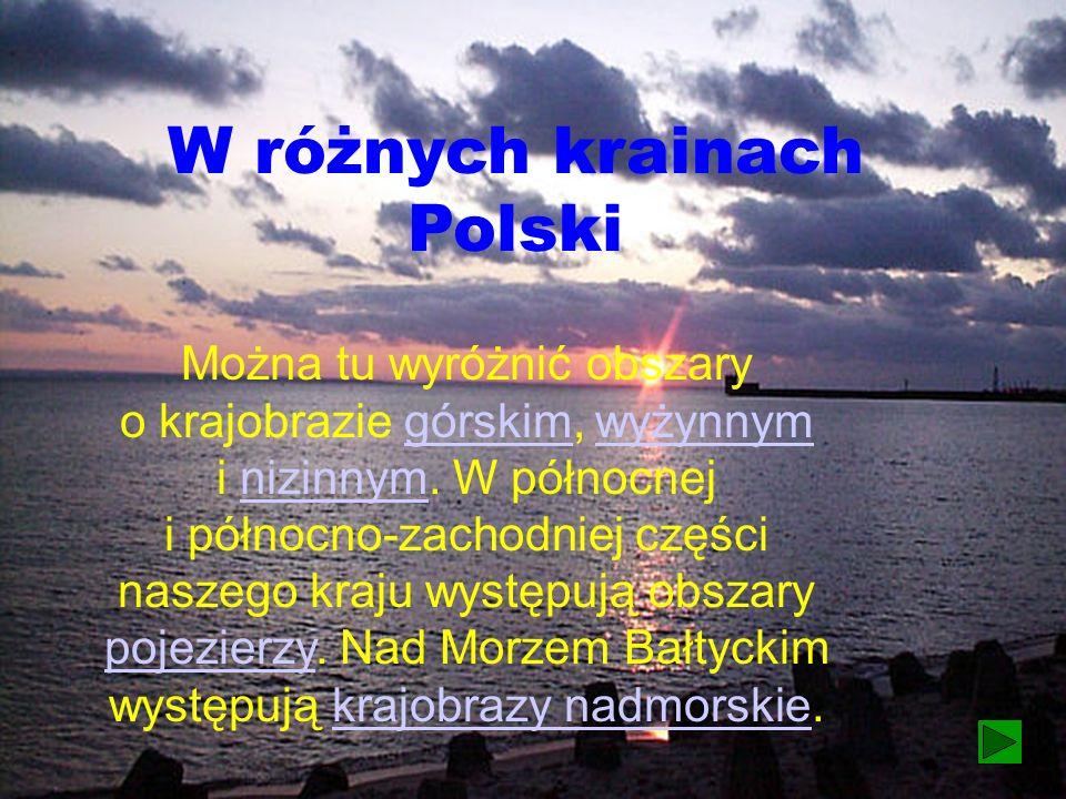 W różnych krainach Polski Można tu wyróżnić obszary o krajobrazie górskim, wyżynnym i nizinnym.