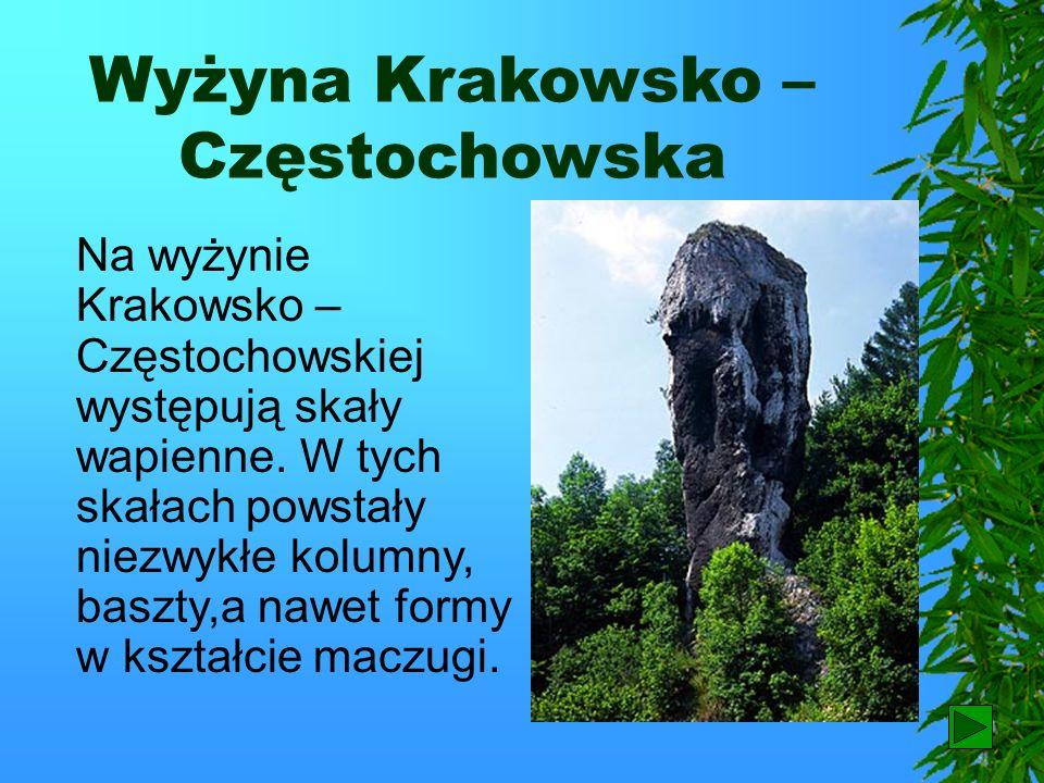 Wyżyny Południowa i południowo – wschodnia część Polski jest wyżynna, ale jej poszczególne krainy geograficzne znacznie różnią się między sobą.
