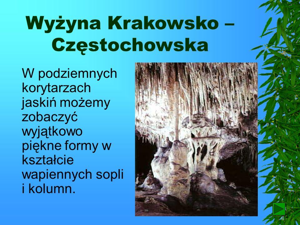 Wyżyna Krakowsko – Częstochowska Na wyżynie Krakowsko – Częstochowskiej występują skały wapienne. W tych skałach powstały niezwykłe kolumny, baszty,a