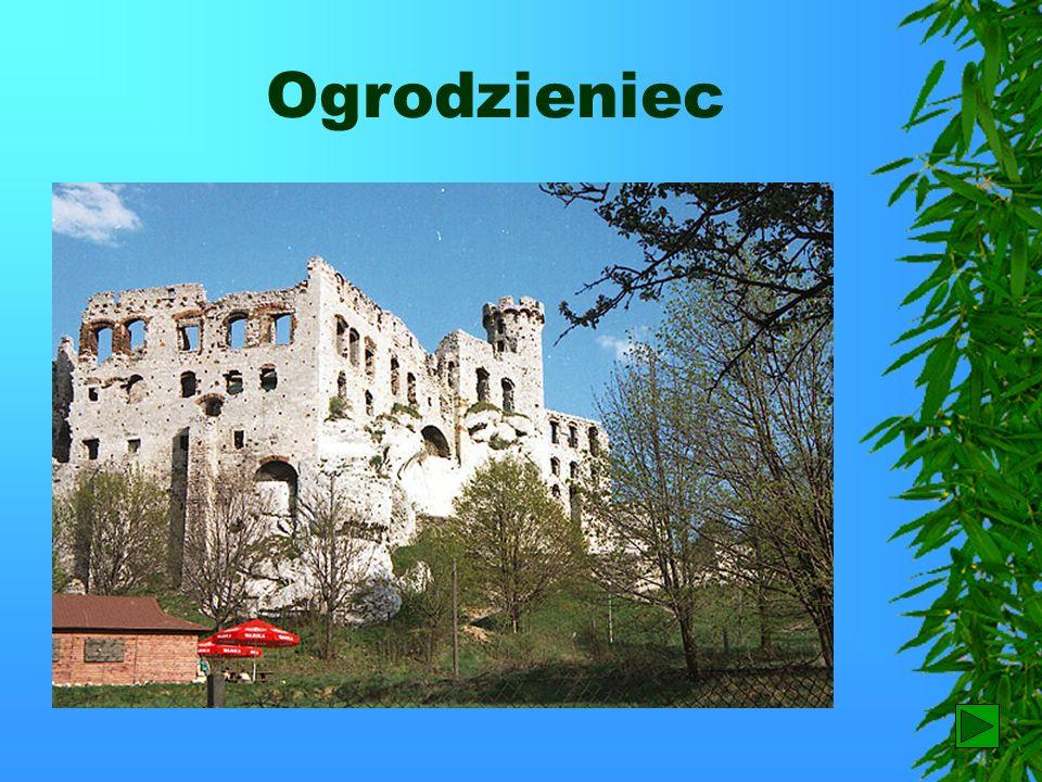Wyżyna Krakowsko – Częstochowska W czasie wędrówki Szlakiem Orlich Gniazd, wiodącym z Krakowa do Częstochowy można podziwiać nie tylko malownicze kraj