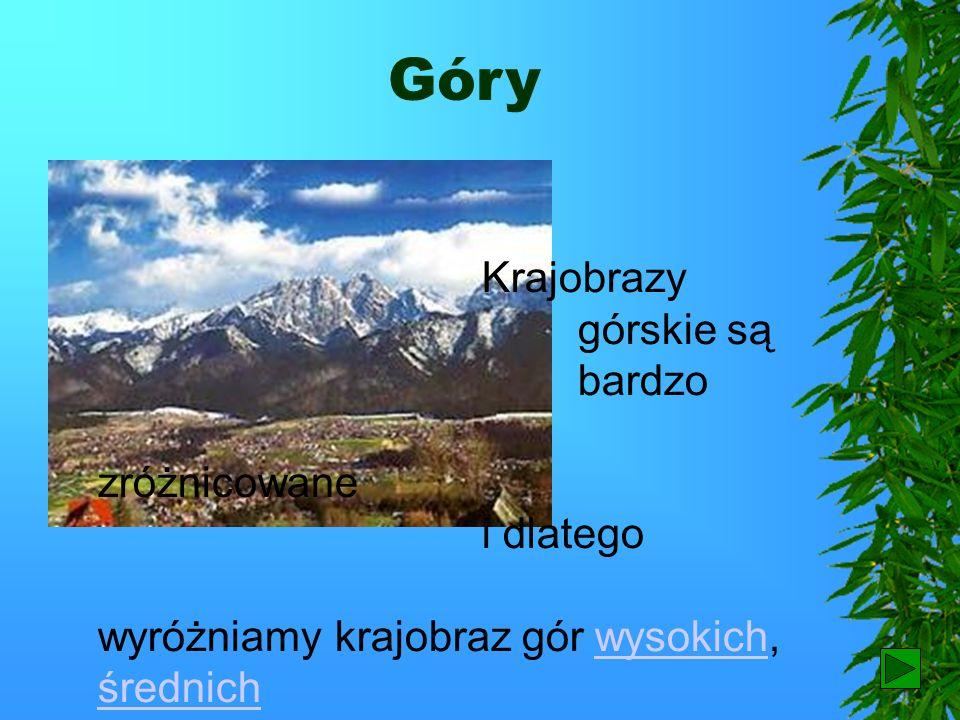 Góry Krajobrazy górskie są bardzo zróżnicowane i dlatego wyróżniamy krajobraz gór wysokich, średnich i niskich.wysokich średnichniskich