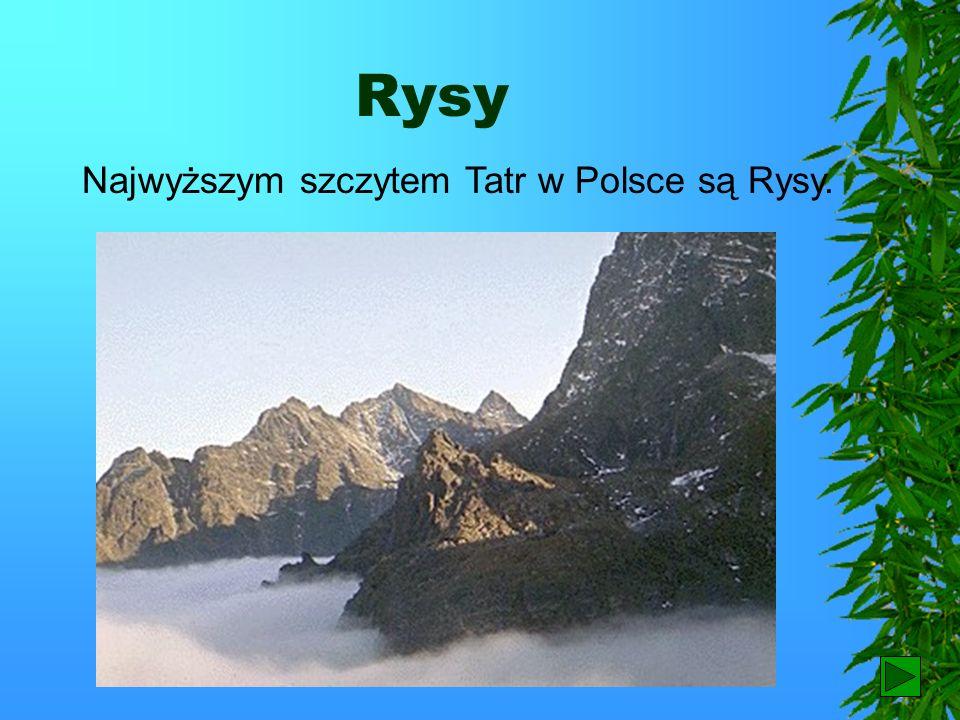 Wybrzeże Na polskim wybrzeżu znajdują się dwie mierzeje: Wiślana i Helska. Hel