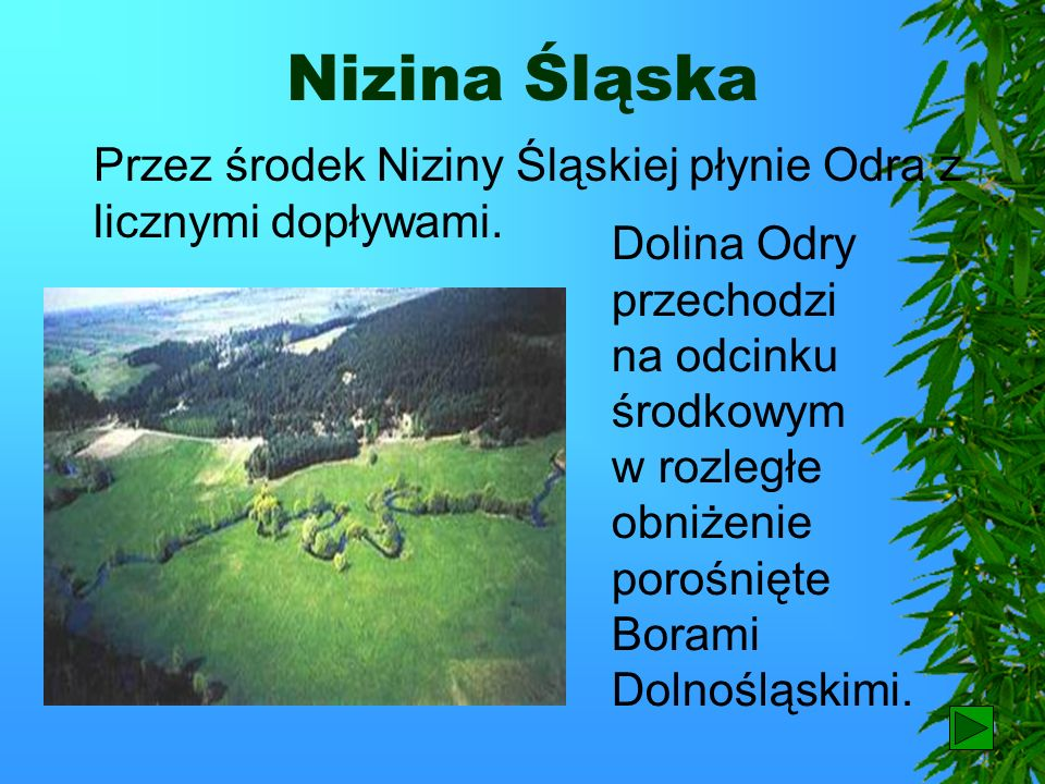 Warszawa Centralnym punktem Niziny Mazowieckiej jest Warszawa, stolica Polski.