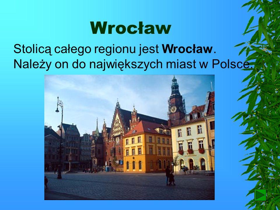 Nizina Śląska Teren poprzecinany licznymi wałami wydm porasta jednostajny bór sosnowy. Na obszarze borów występują często tereny podmokłe, a nawet typ