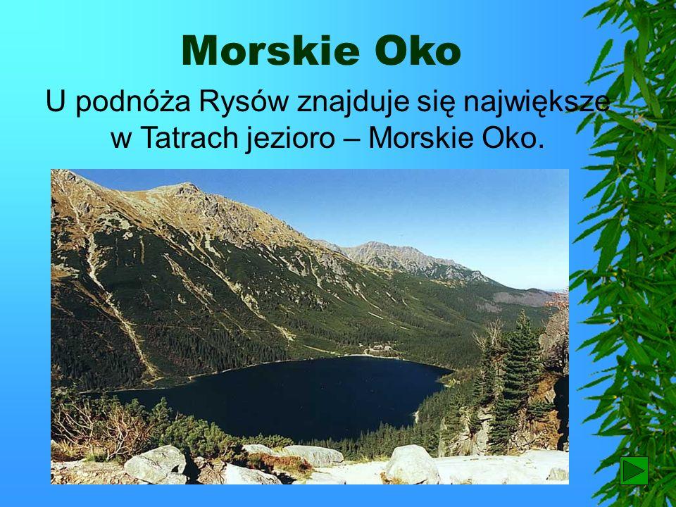 Rysy Najwyższym szczytem Tatr w Polsce są Rysy.