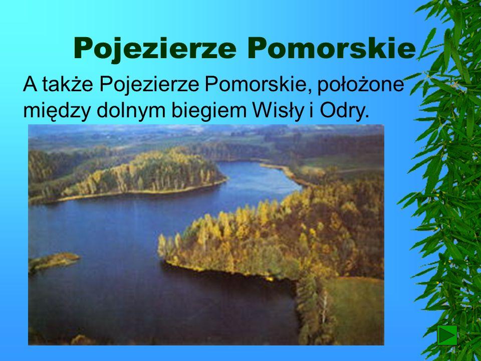 Pojezierze Mazurskie z największymi w kraju jeziorami: Śniadrwy, Mamry i Hańcza (najgłębsze). Hańcza Śniadrwy