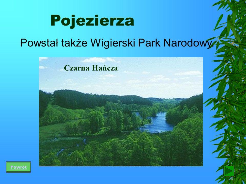 Pojezierza Na pojezierzach wiele jest terenów do wypoczynku oraz uprawiania sportów. Aby uchronić przyrodę przed najazdem turystów utworzono kilkadzie