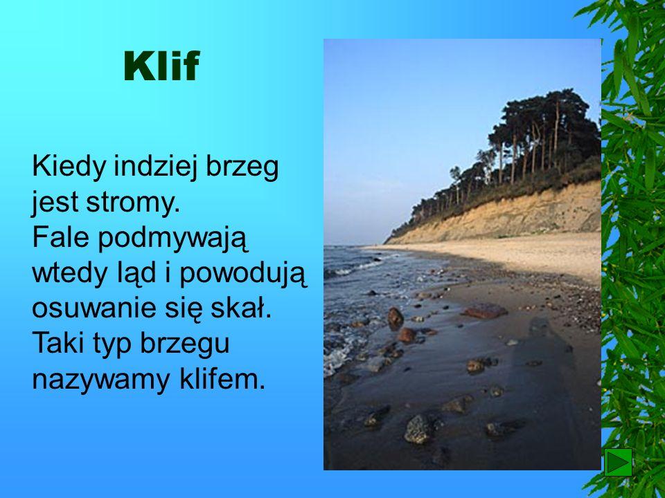 Plaża Brzeg morski czasem jest płaski i są tam szerokie plaże.