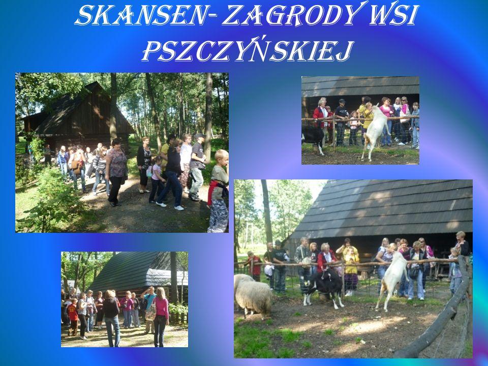Skansen- Zagrody Wsi Pszczy Ń skiej