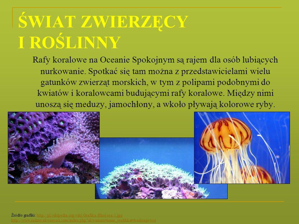 ŚWIAT ZWIERZĘCY I ROŚLINNY Rafy koralowe na Oceanie Spokojnym są rajem dla osób lubiących nurkowanie. Spotkać się tam można z przedstawicielami wielu