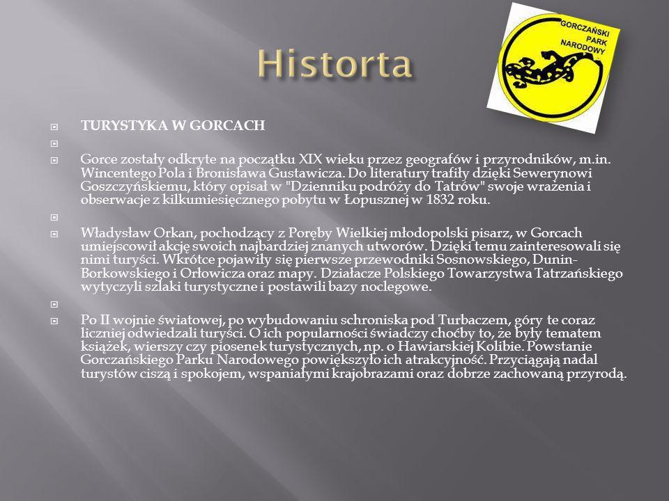 TURYSTYKA W GORCACH Gorce zostały odkryte na początku XIX wieku przez geografów i przyrodników, m.in. Wincentego Pola i Bronisława Gustawicza. Do lite