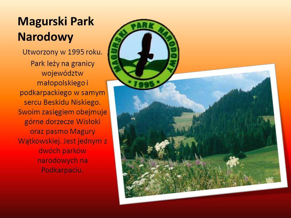 Magurski Park Narodowy Utworzony w 1995 roku. Park leży na granicy województw małopolskiego i podkarpackiego w samym sercu Beskidu Niskiego. Swoim zas