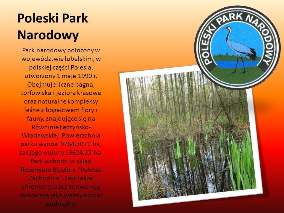 Poleski Park Narodowy Park narodowy położony w województwie lubelskim, w polskiej części Polesia, utworzony 1 maja 1990 r. Obejmuje liczne bagna, torf