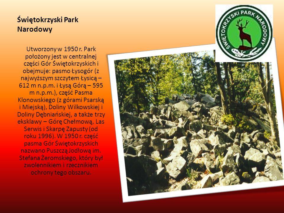 Świętokrzyski Park Narodowy Utworzony w 1950 r. Park położony jest w centralnej części Gór Świętokrzyskich i obejmuje: pasmo Łysogór (z najwyższym szc
