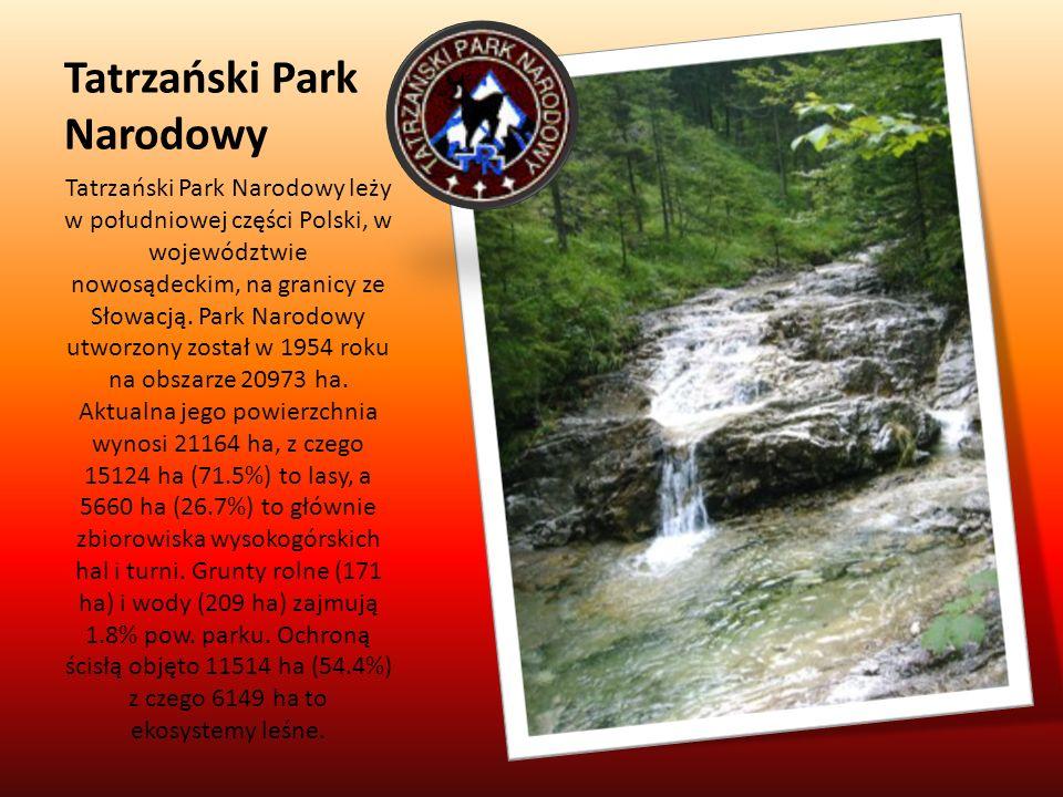 Tatrzański Park Narodowy Tatrzański Park Narodowy leży w południowej części Polski, w województwie nowosądeckim, na granicy ze Słowacją. Park Narodowy