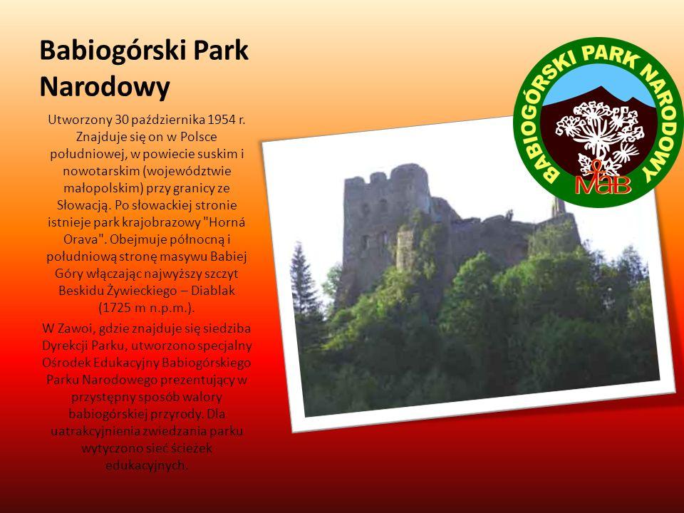 Babiogórski Park Narodowy Utworzony 30 października 1954 r. Znajduje się on w Polsce południowej, w powiecie suskim i nowotarskim (województwie małopo