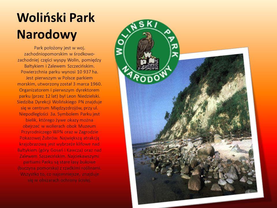 Woliński Park Narodowy Park położony jest w woj. zachodniopomorskim w środkowo- zachodniej części wyspy Wolin, pomiędzy Bałtykiem i Zalewem Szczecińsk