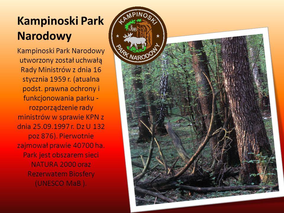 Kampinoski Park Narodowy Kampinoski Park Narodowy utworzony został uchwałą Rady Ministrów z dnia 16 stycznia 1959 r. (atualna podst. prawna ochrony i