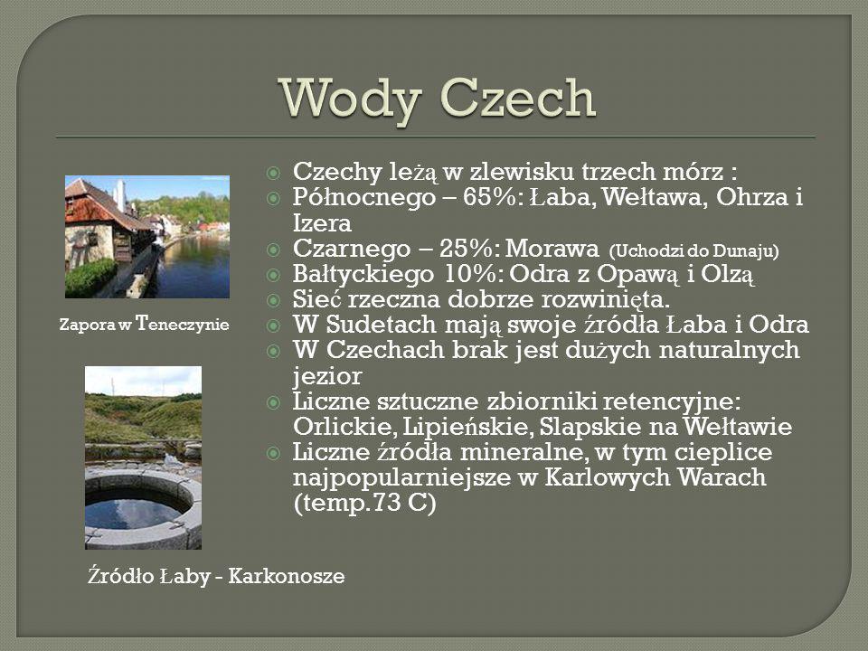 Wy ż ynno-górskie obszary Czech pokrywaj ą gleby brunatne, W okolicach Pragi – czarnoziemy, W okolicach O ł omu ń ca – lessowe gleby p ł owe