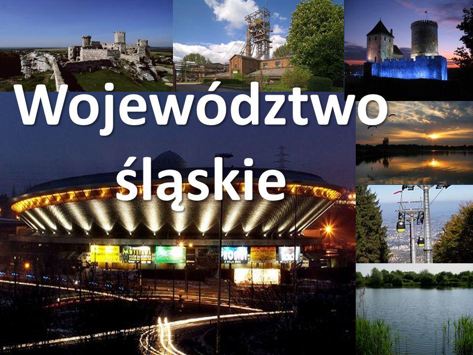 Województwo Śląskie obejmuje zróżnicowany krajobrazowo teren od Beskidu Śląskiego i Żywieckiego, poprzez Pogórze Beskidzkie, po lesiste obszary Niziny Śląskiej i zurbanizowany obszar Wyżyny Śląskiej.