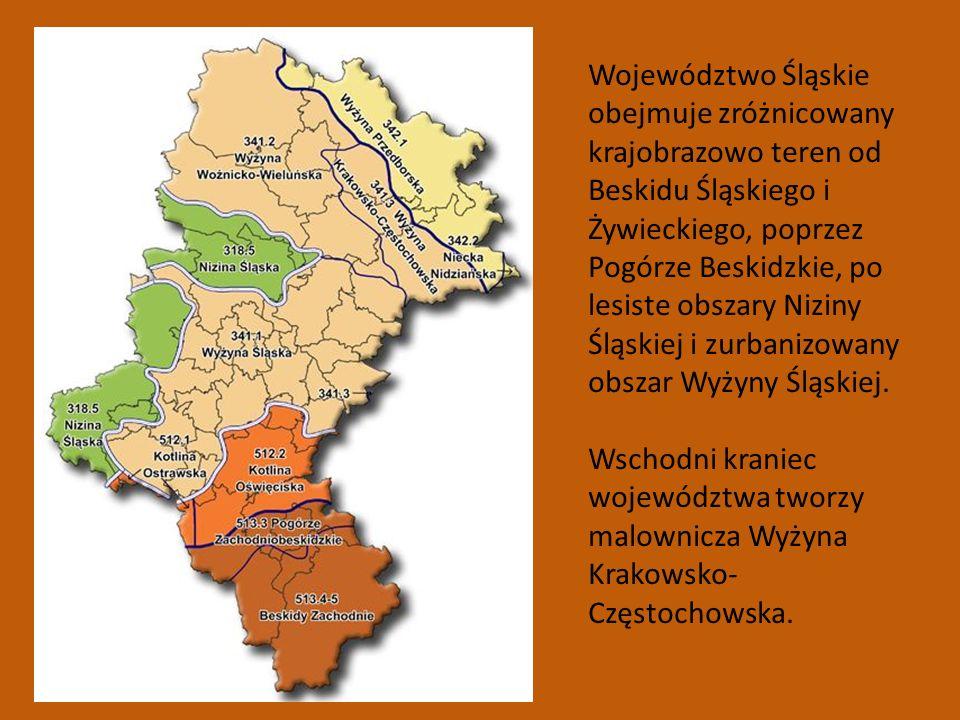 Województwo Śląskie obejmuje zróżnicowany krajobrazowo teren od Beskidu Śląskiego i Żywieckiego, poprzez Pogórze Beskidzkie, po lesiste obszary Niziny