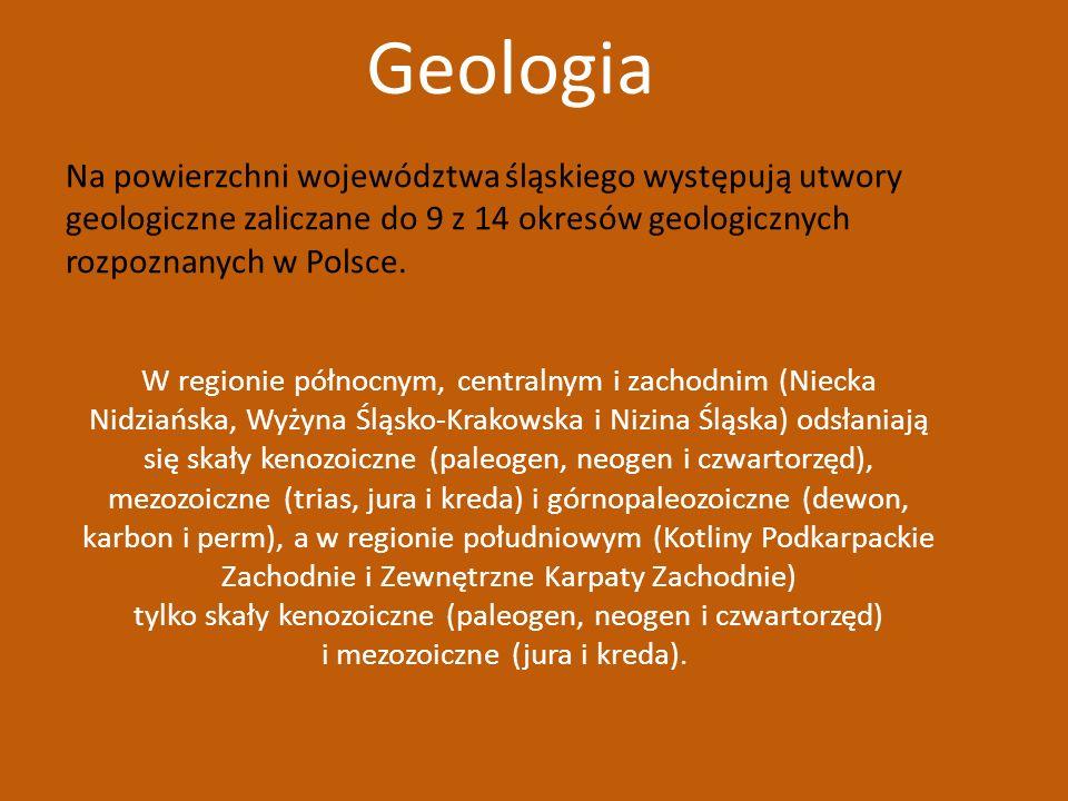 Na powierzchni województwa śląskiego występują utwory geologiczne zaliczane do 9 z 14 okresów geologicznych rozpoznanych w Polsce. W regionie północny