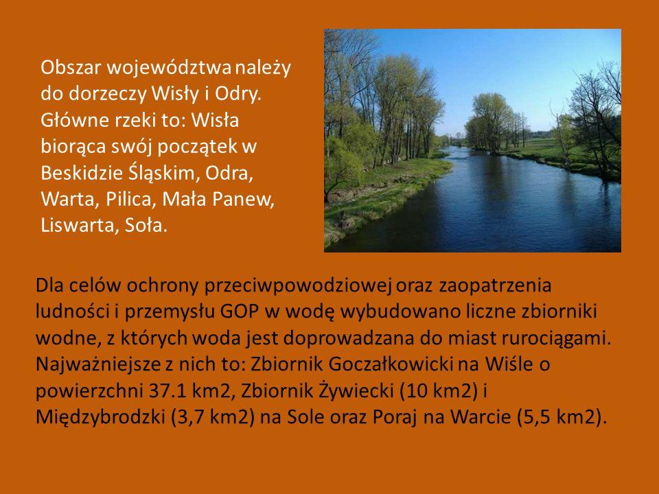 Obszar województwa należy do dorzeczy Wisły i Odry. Główne rzeki to: Wisła biorąca swój początek w Beskidzie Śląskim, Odra, Warta, Pilica, Mała Panew,