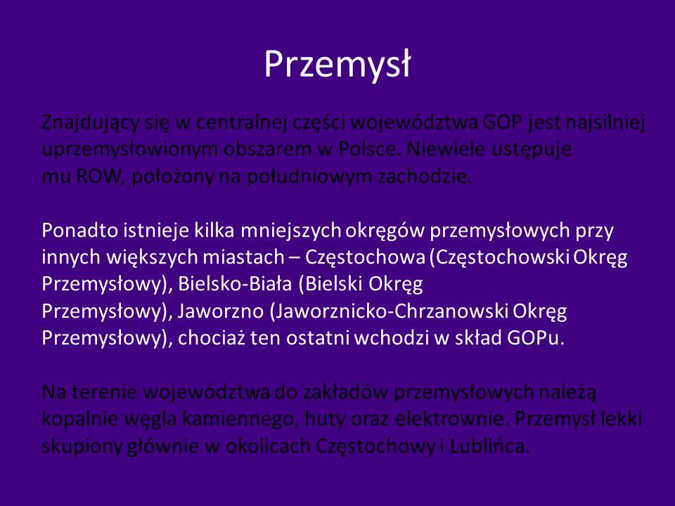 Przemysł Znajdujący się w centralnej części województwa GOP jest najsilniej uprzemysłowionym obszarem w Polsce. Niewiele ustępuje mu ROW, położony na