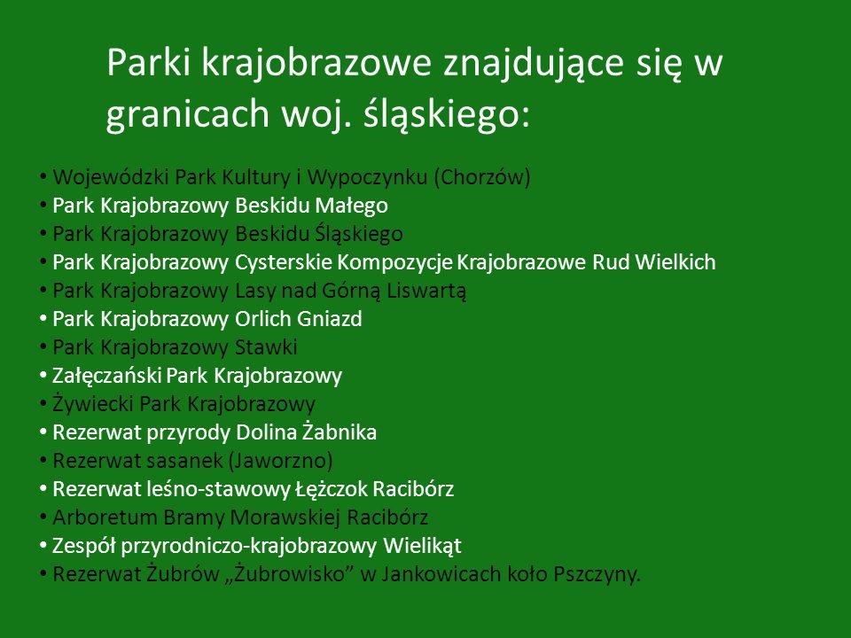Wojewódzki Park Kultury i Wypoczynku (Chorzów) Park Krajobrazowy Beskidu Małego Park Krajobrazowy Beskidu Śląskiego Park Krajobrazowy Cysterskie Kompo
