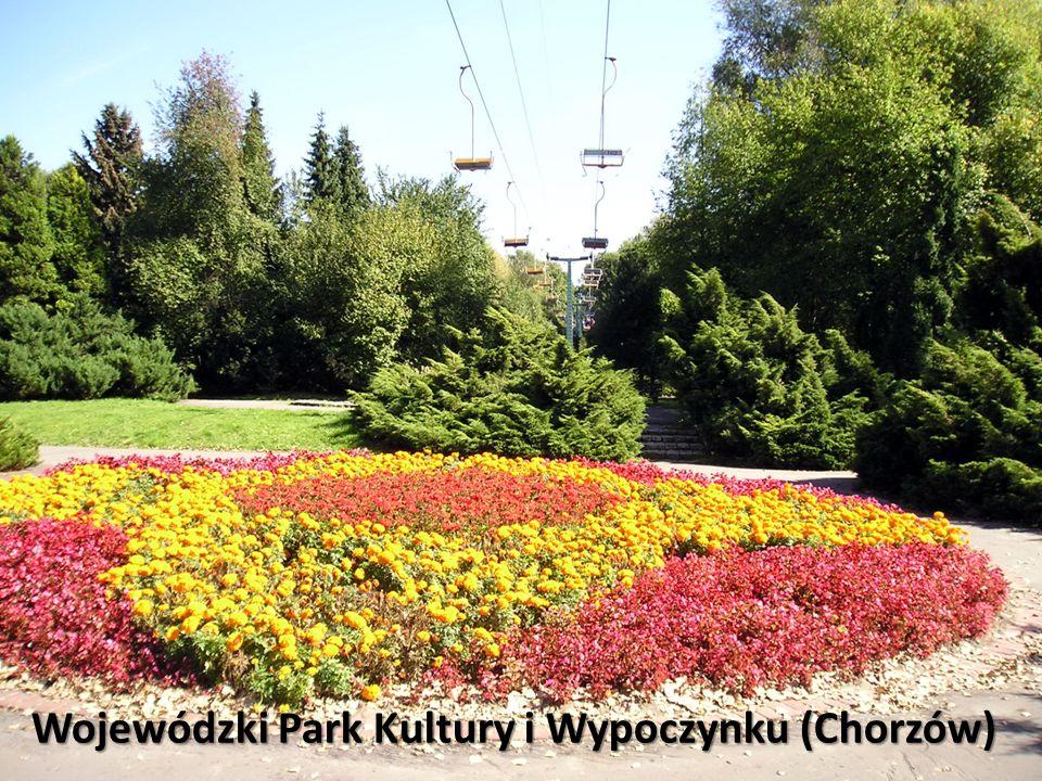 Wojewódzki Park Kultury i Wypoczynku (Chorzów)