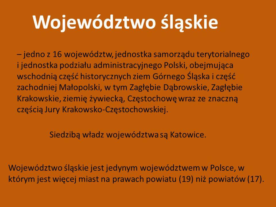 Województwo śląskie jest jedynym województwem w Polsce, w którym jest więcej miast na prawach powiatu (19) niż powiatów (17). Województwo śląskie – je