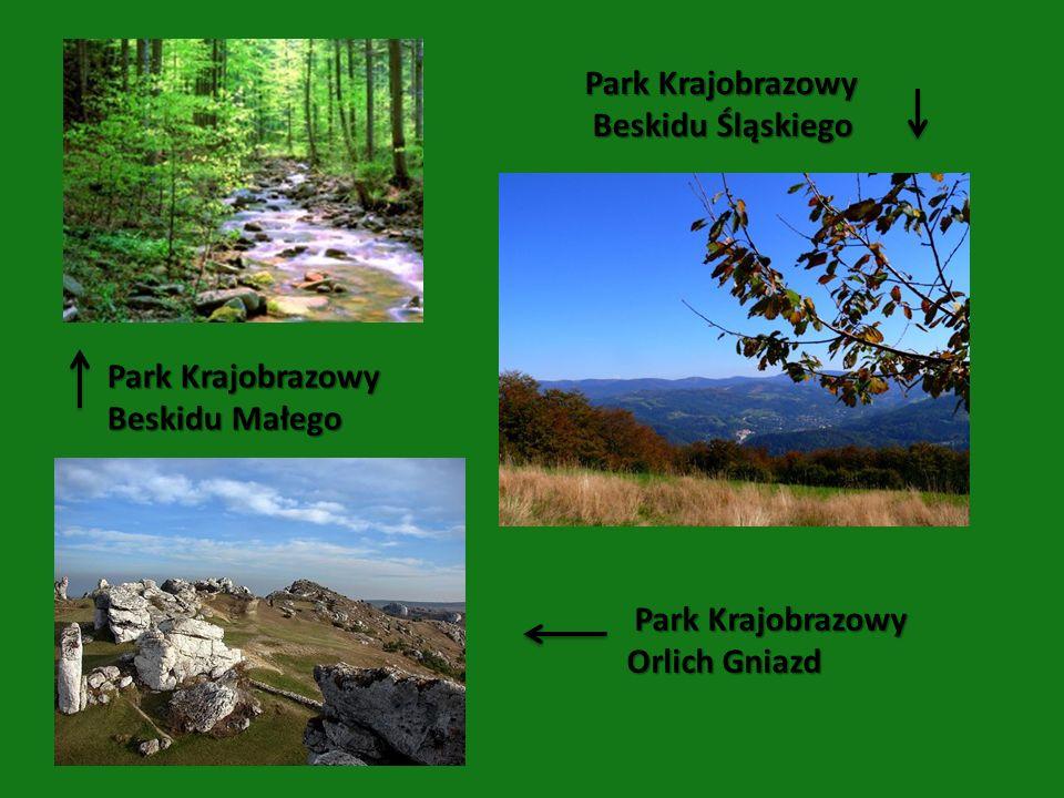 Park Krajobrazowy Beskidu Małego Park Krajobrazowy Beskidu Śląskiego Beskidu Śląskiego Park Krajobrazowy Park Krajobrazowy Orlich Gniazd