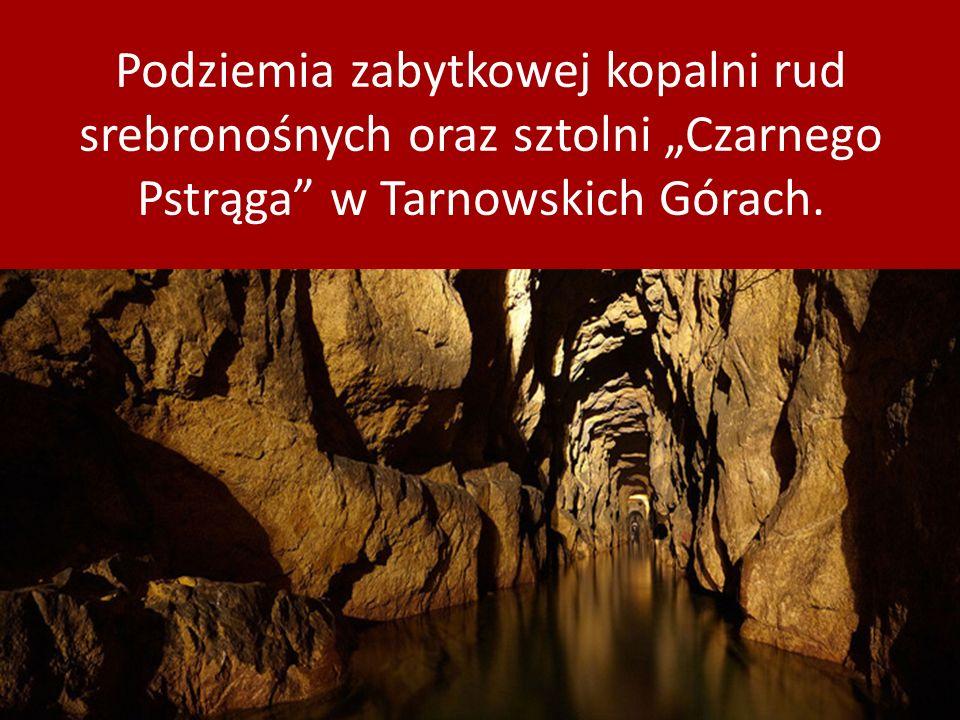 Podziemia zabytkowej kopalni rud srebronośnych oraz sztolni Czarnego Pstrąga w Tarnowskich Górach.
