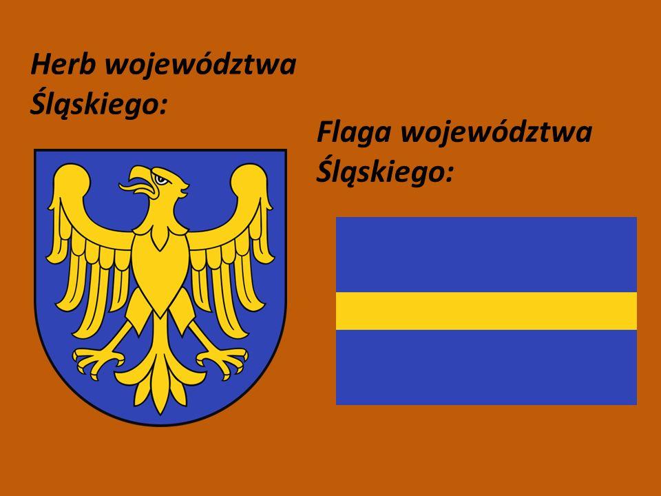 Największe miasta 1.Katowice Liczba ludności:Powierzchnia: 309 621164,54 km² 2.