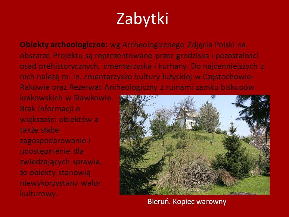Zabytki Obiekty archeologiczne: wg Archeologicznego Zdjęcia Polski na obszarze Projektu są reprezentowane przez grodziska i pozostałości osad prehisto