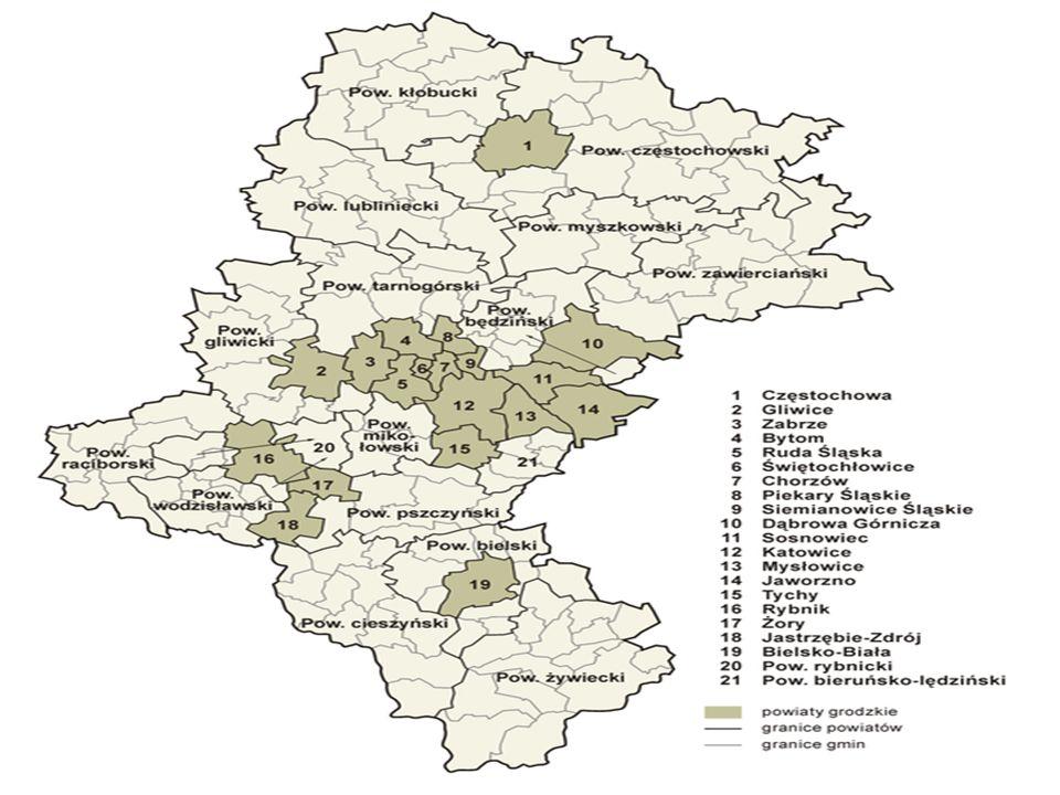 Lasy stanowią 31,7% ogólnej powierzchni województwa, przy średniej krajowej 28,4%.