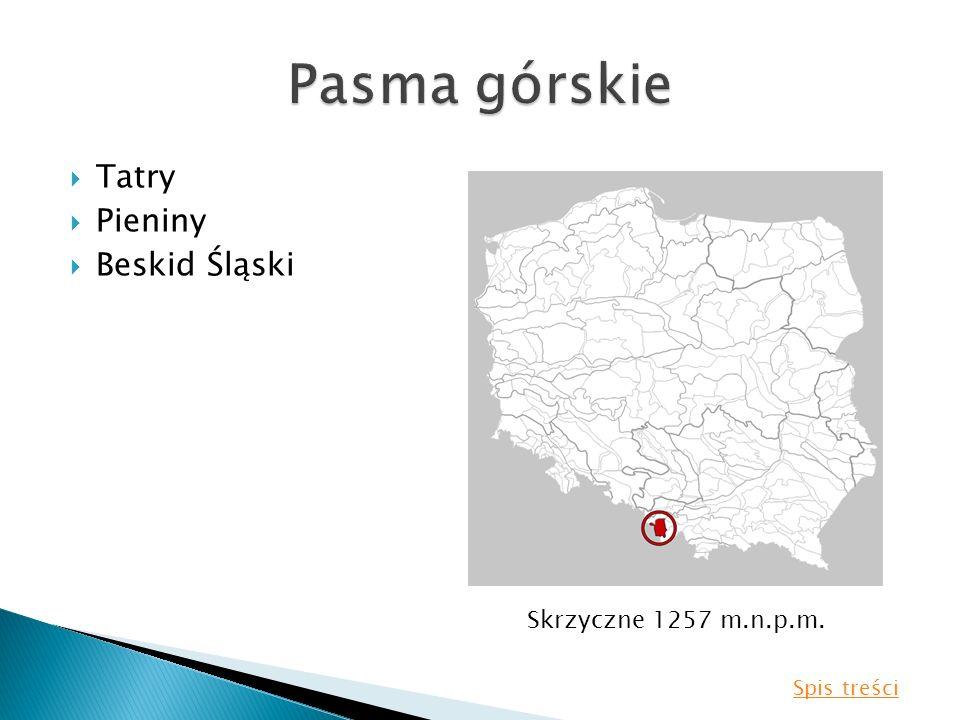 Tatry Pieniny Beskid Śląski Skrzyczne 1257 m.n.p.m. Spis treści