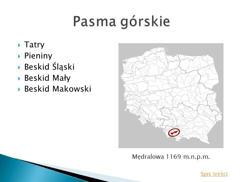Tatry Pieniny Beskid Śląski Beskid Mały Beskid Makowski Mędralowa 1169 m.n.p.m. Spis treści