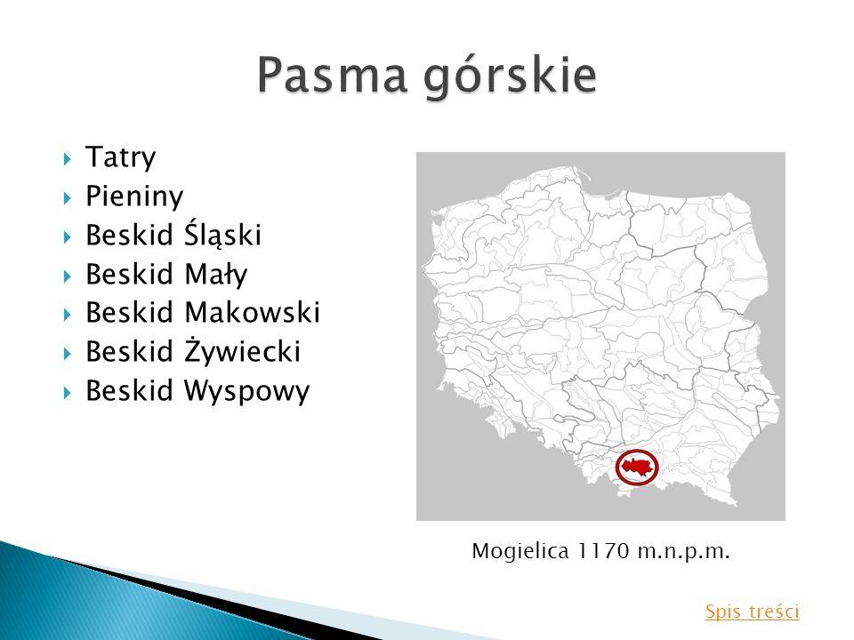 Tatry Pieniny Beskid Śląski Beskid Mały Beskid Makowski Beskid Żywiecki Beskid Wyspowy Mogielica 1170 m.n.p.m. Spis treści
