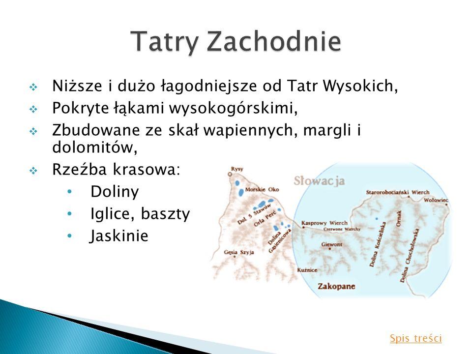 Niższe i dużo łagodniejsze od Tatr Wysokich, Pokryte łąkami wysokogórskimi, Zbudowane ze skał wapiennych, margli i dolomitów, Rzeźba krasowa: Doliny I