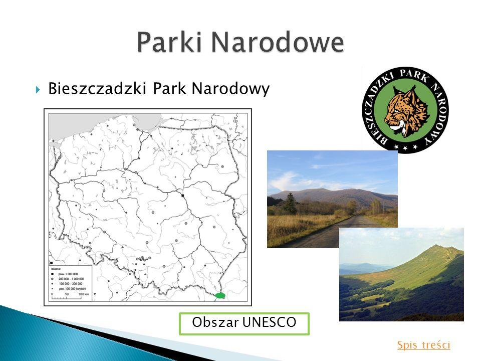 Bieszczadzki Park Narodowy Obszar UNESCO Spis treści