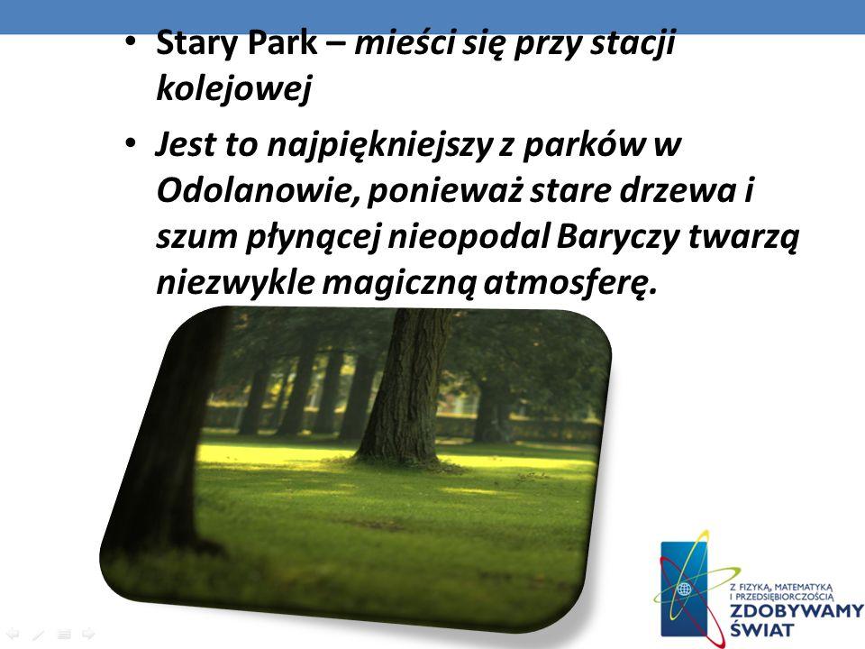Stary Park – mieści się przy stacji kolejowej Jest to najpiękniejszy z parków w Odolanowie, ponieważ stare drzewa i szum płynącej nieopodal Baryczy tw