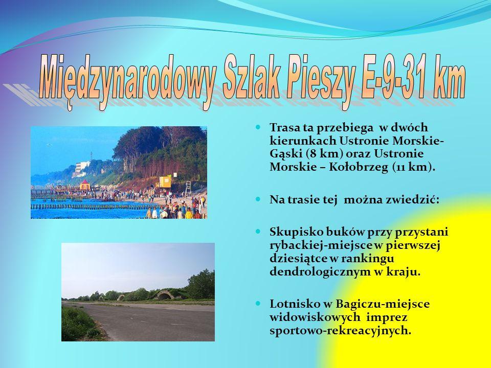 Trasa ta przebiega w dwóch kierunkach Ustronie Morskie- Gąski (8 km) oraz Ustronie Morskie – Kołobrzeg (11 km). Na trasie tej można zwiedzić: Skupisko
