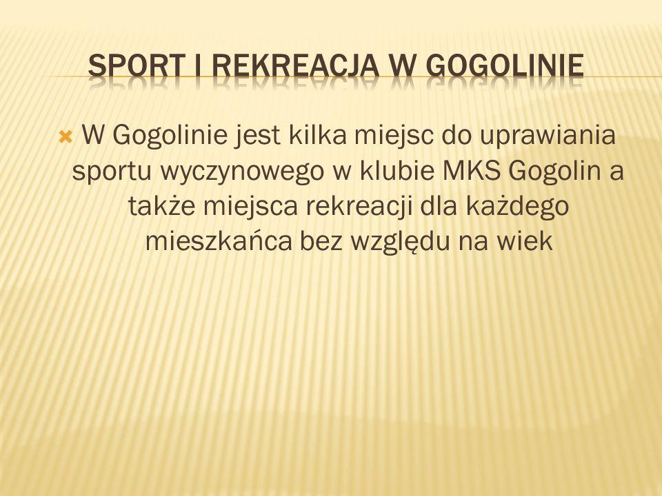 W Gogolinie jest kilka miejsc do uprawiania sportu wyczynowego w klubie MKS Gogolin a także miejsca rekreacji dla każdego mieszkańca bez względu na wiek